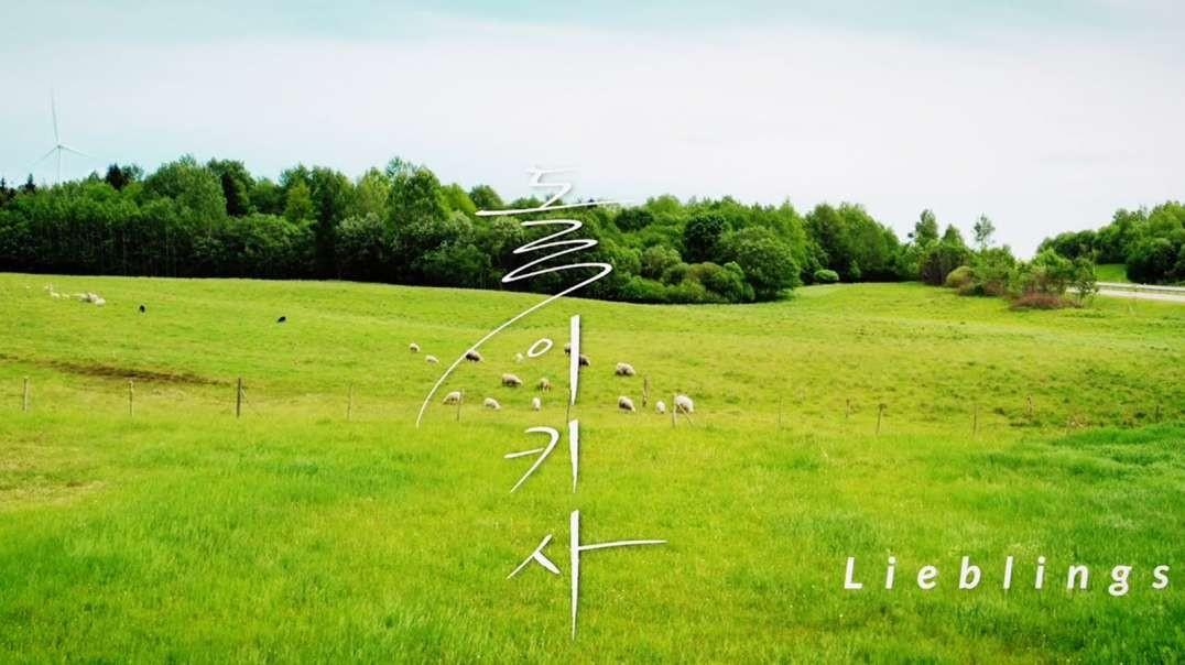 돌이키사 'Song Lieblings' (오세연) Produced by 이권희